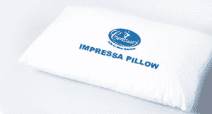 Impressa Pillow