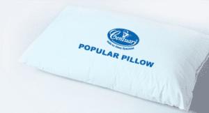 popular-pillow