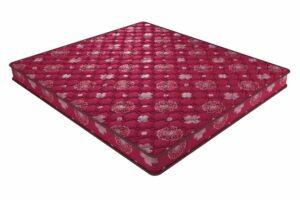 Smart collection - Dr. Sleep - Coir Mattress - Centuary