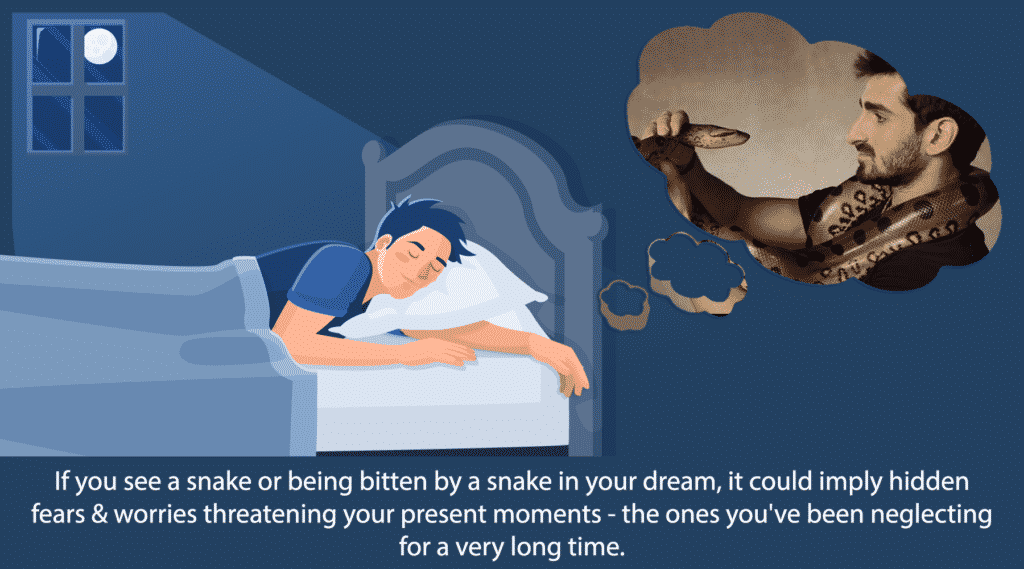 Sleep & Dreams – Decoding Dreams - snake
