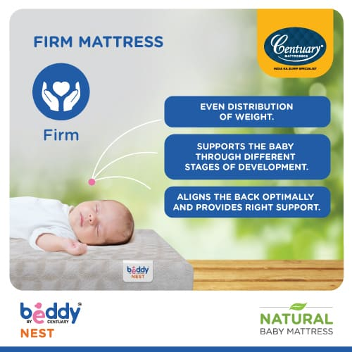 beddy nest features